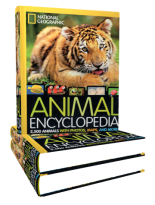 animal-encyclopedia