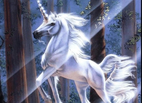 unicorn-pegasus-13.jpg