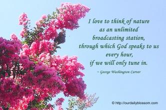 nature god's broadcasting system